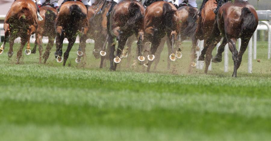 Pferderennen - Foto: iStock.com/winhorse